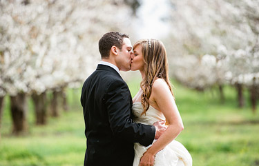 Bride and groom kissing in the blooming cherry orchard