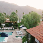 Palm trees, hills and the pool at Alcazar Hotel in Palm Springs.
