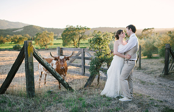 Bride and groom and the longhorn at Beltane Ranch.