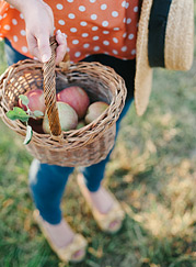 Apples, basket and a hat