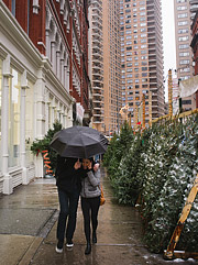 Couple walking past christmas tree lot in NYC