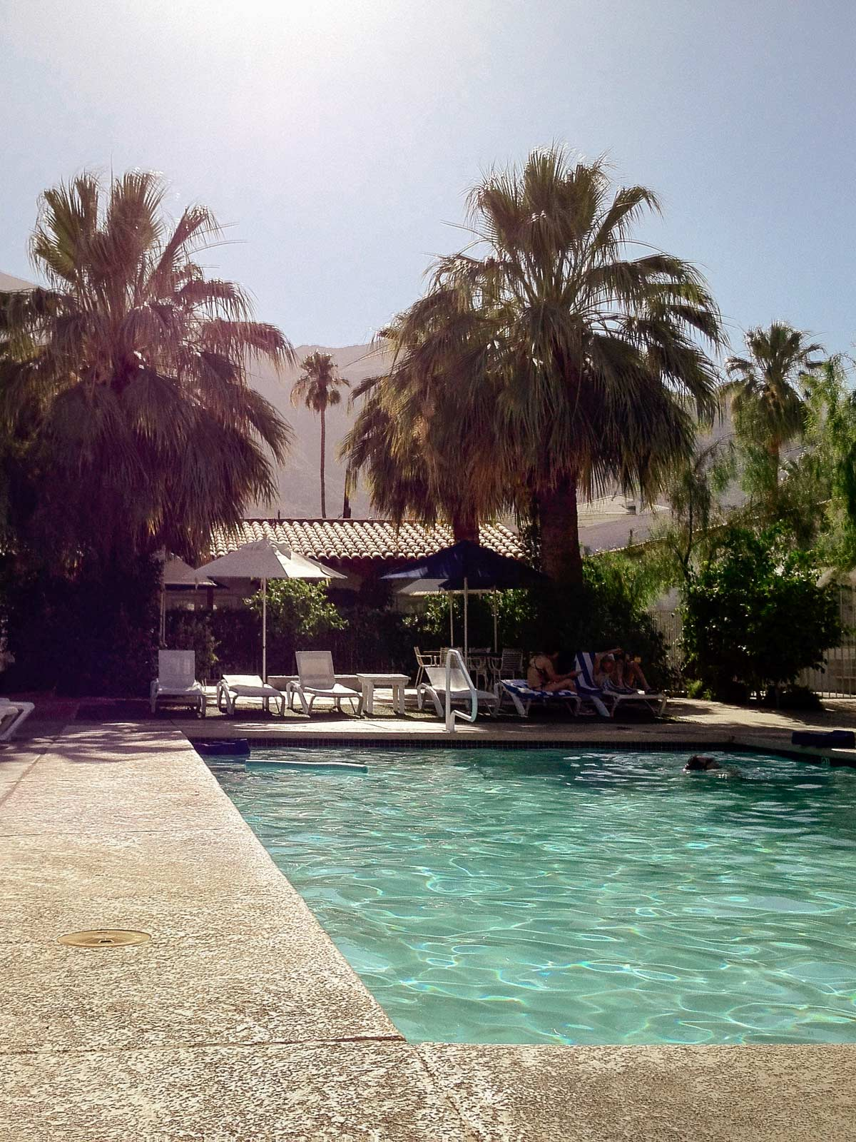 Pool Life - Palm Springs