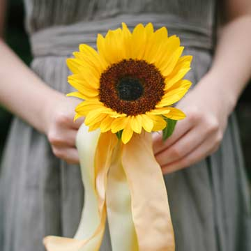Wedding detail of bridesmaid flowers